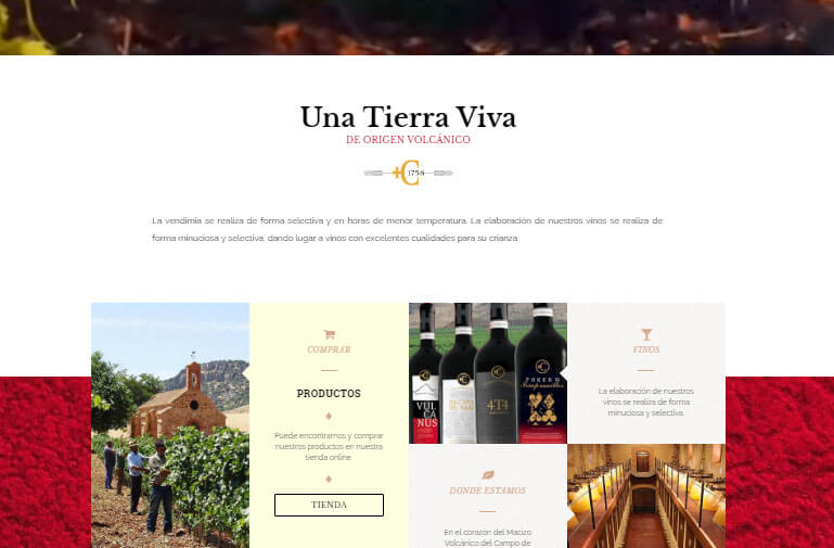 Diseño página web para Encomienda