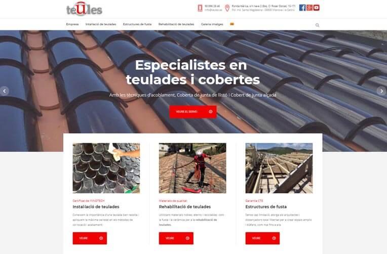 Disseny pàgina web Teules